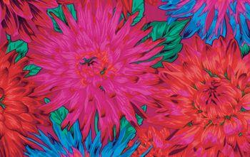 PWPJ054.REDXX Cactus Dahlia - Red