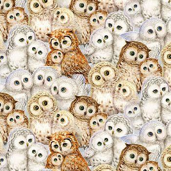 4944-9 Studio E Packed Owls - Off White