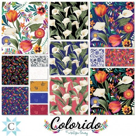TSQ0304 Clothworks Colorido 10 Squares