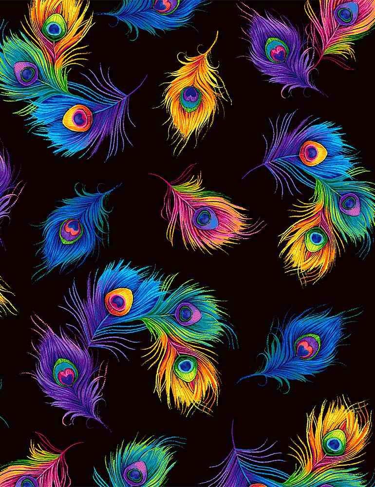 C8413-Black - Timeless Treasures Tossed Peacock Feathers - Black