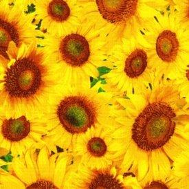 Fabriquilt-State Flowers-Kansas-Sunflower   120-2831