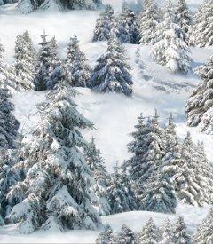 Elizabeth's Studio-Landscape Medley  215-White