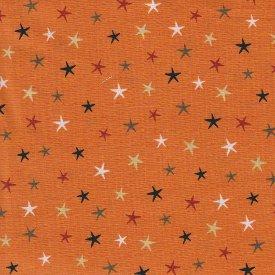 Studio E Fabrics-Witchy  3708-33