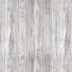 Studio E Fabrics-Thankful and Blessed  4670-39 Gray