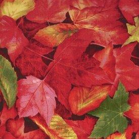RJR-An Autumn Wind  8713-1