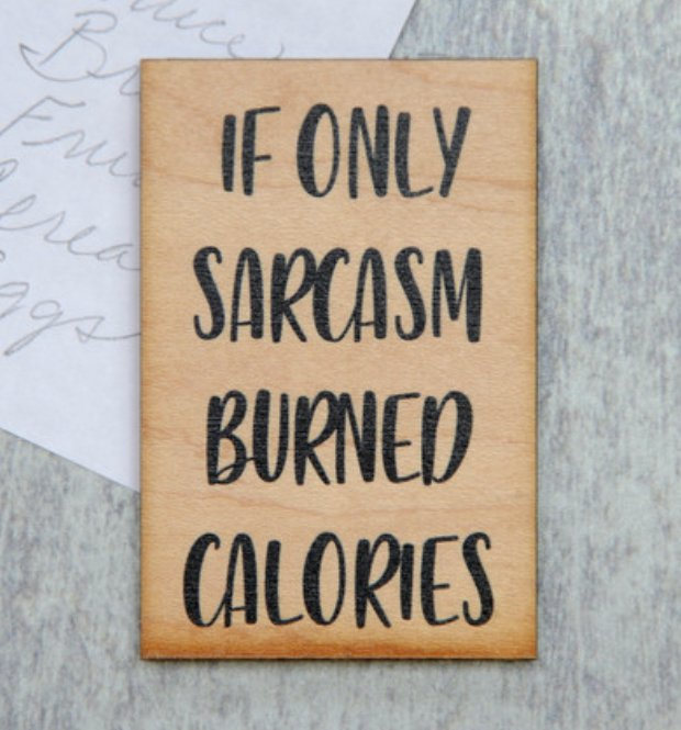 If Only Sarcasm magnet