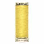 Guttermann 100m #808
