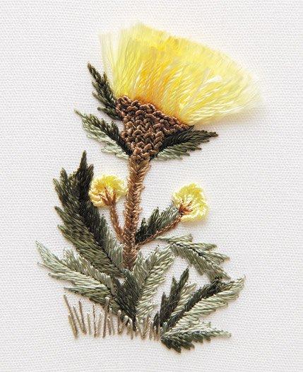 Edmar Kit, Cornflower #1701