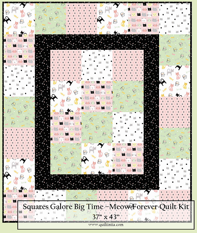Meow and Forever -  Squares Galore Big Time Quilt Kit