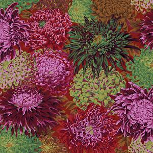 Japanese Chrysanthemum - Scarlet