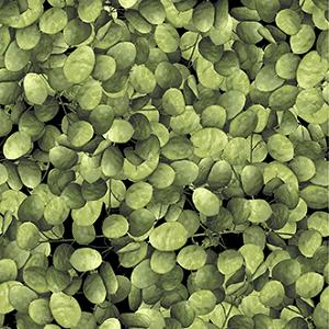 Flower Power - Petals - Light Green