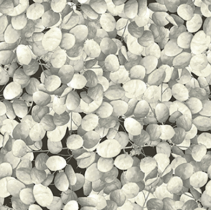 Flower Power - Petals - Cream