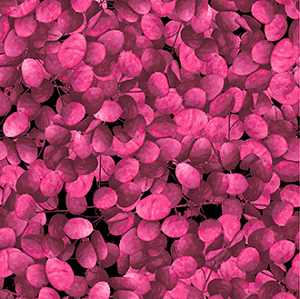 Flower Power - Petals - Raspberry