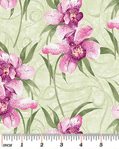 Orchid Shadows 881-44