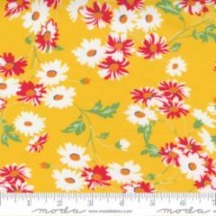 21791 14 Real Daisy Yellow