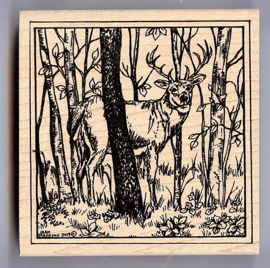 Northwoods - Deer and Birch Trees