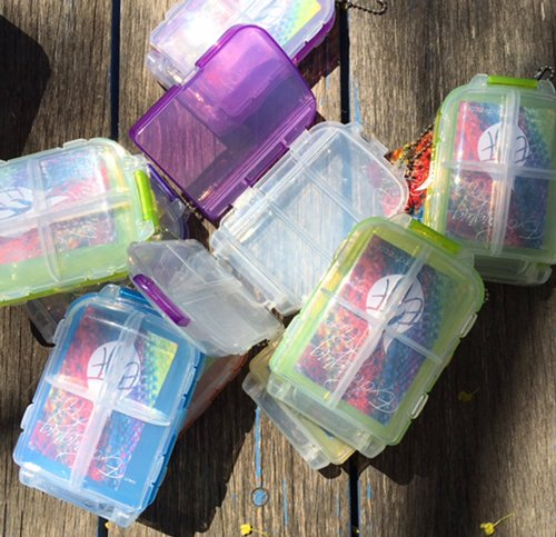 Snap and Go Notions Cases
