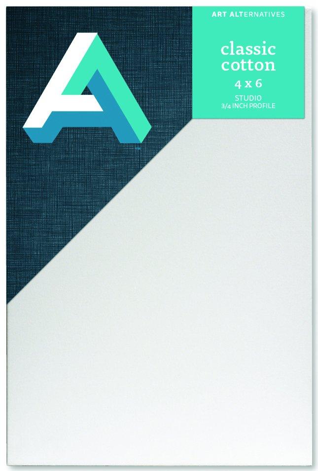 AA Canvas Studio 4X6