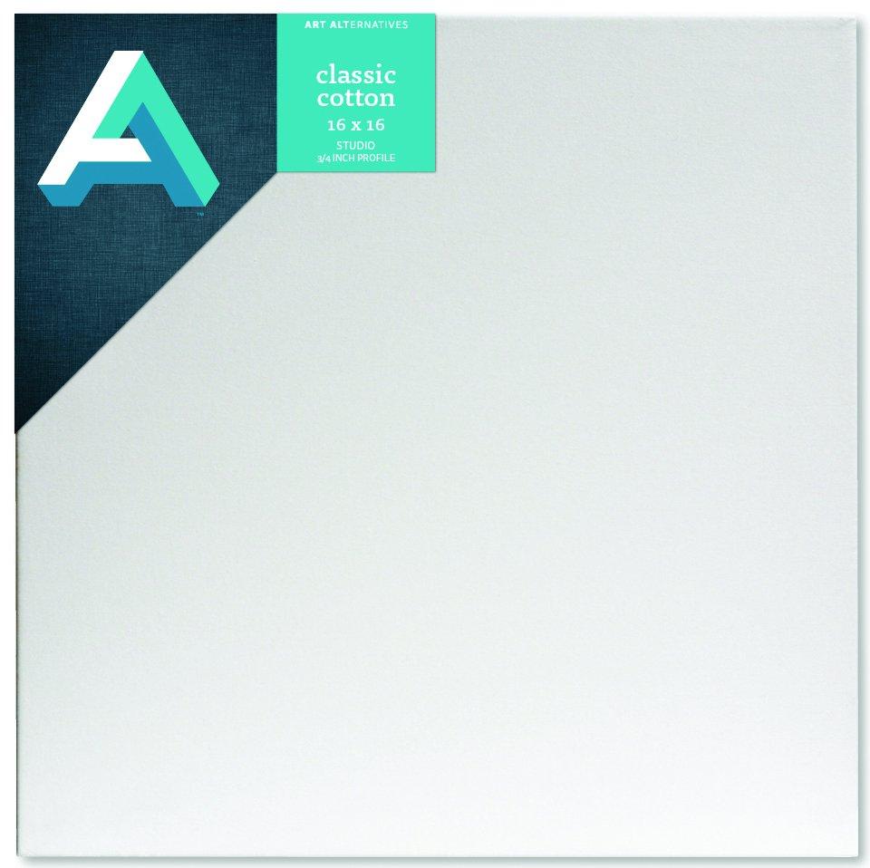 AA Canvas Studio 16X16