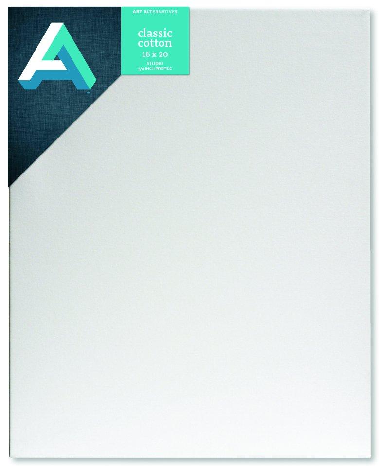 AA Canvas Studio 16X20