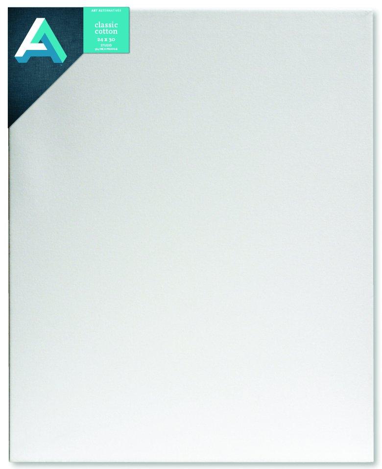 AA Canvas Studio 24X30