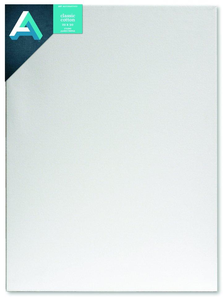 AA Canvas Studio 22X30