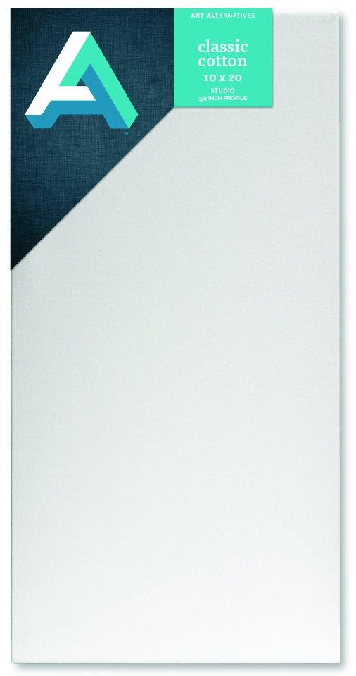AA Canvas Studio 10X20