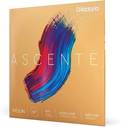 D'Addario A31044M Ascente Violin 4/4 Set