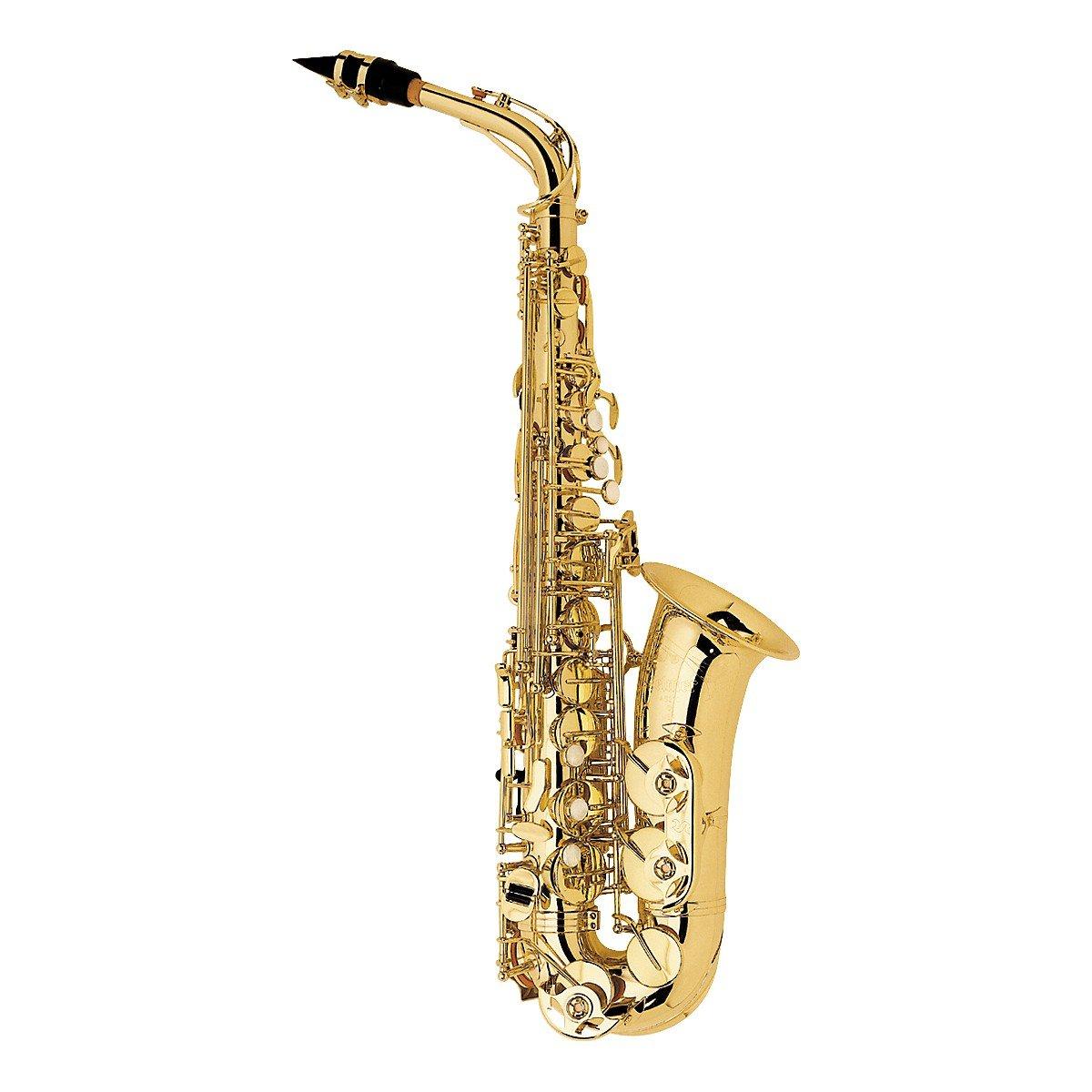 Selmer AS210 Alto Saxophone