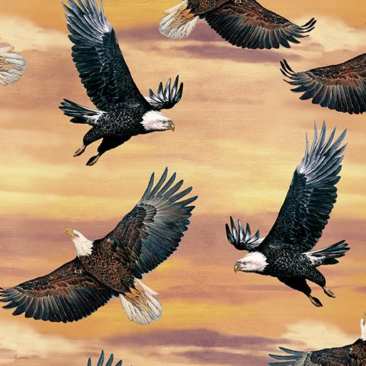 Eagles and Sky Sunset (Soaring Hights)