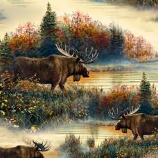 Moose Country - Moose scenic -cream