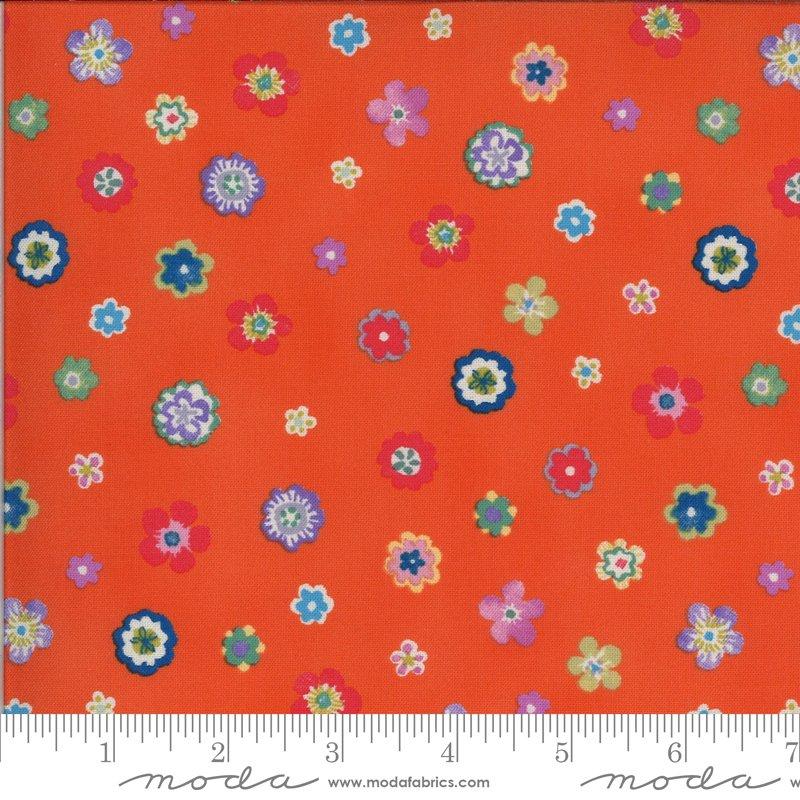 Lulu - Flowers - Clementine