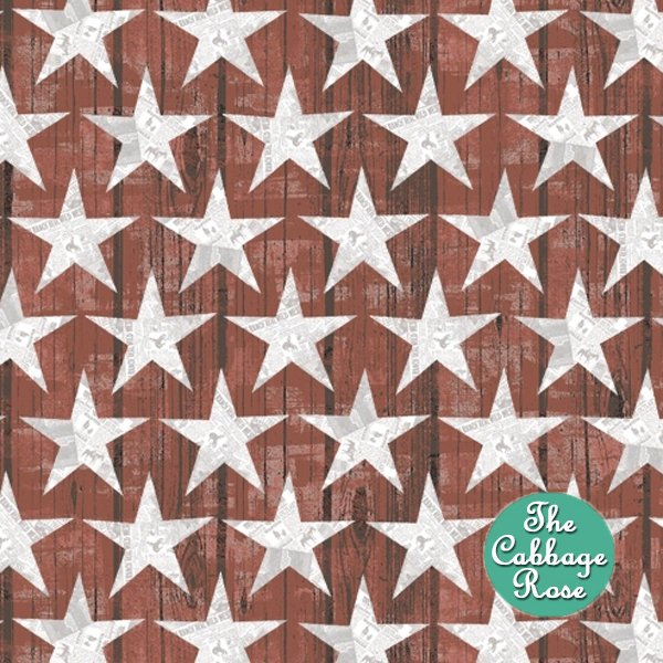 Desert Cowboy - Wood Plank Star on Red