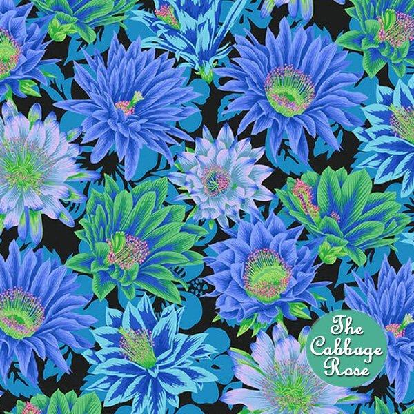 Cactus Flower - Cool