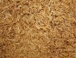 Rice Hulls 50 lb Sack