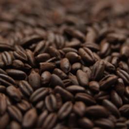 Chocolate Rye