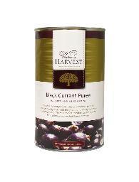 Vintner's Harvest Black Currant