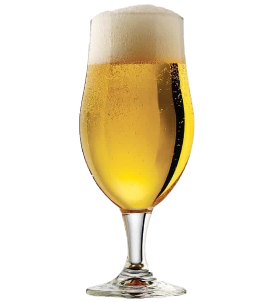 Cream Ale (extract 5 gal)