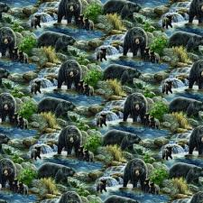COOL WATER BEARS