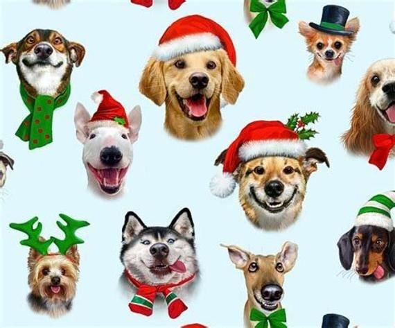 CHRISTMAS SELFIES - DOG