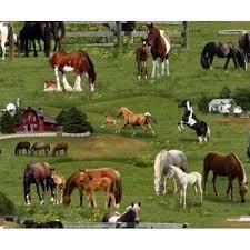 ELIZABETHS STUDIO: HORSE