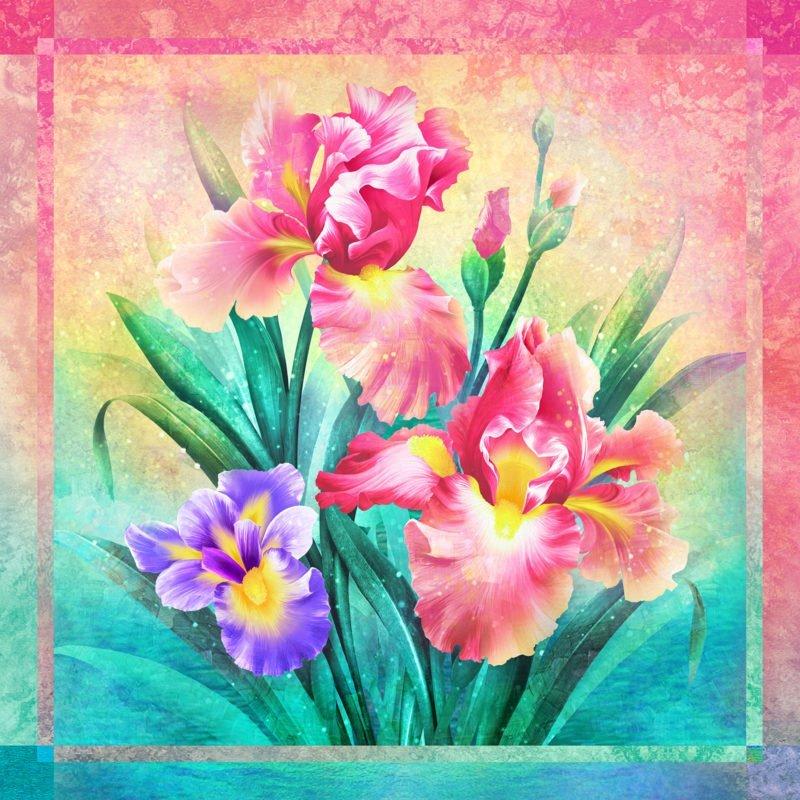 Iris Dream Panel Pink 60x60