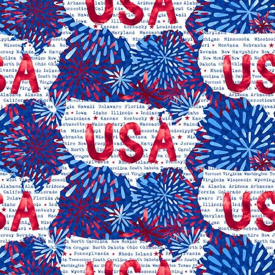 One Land, One Flag USA Fireworks