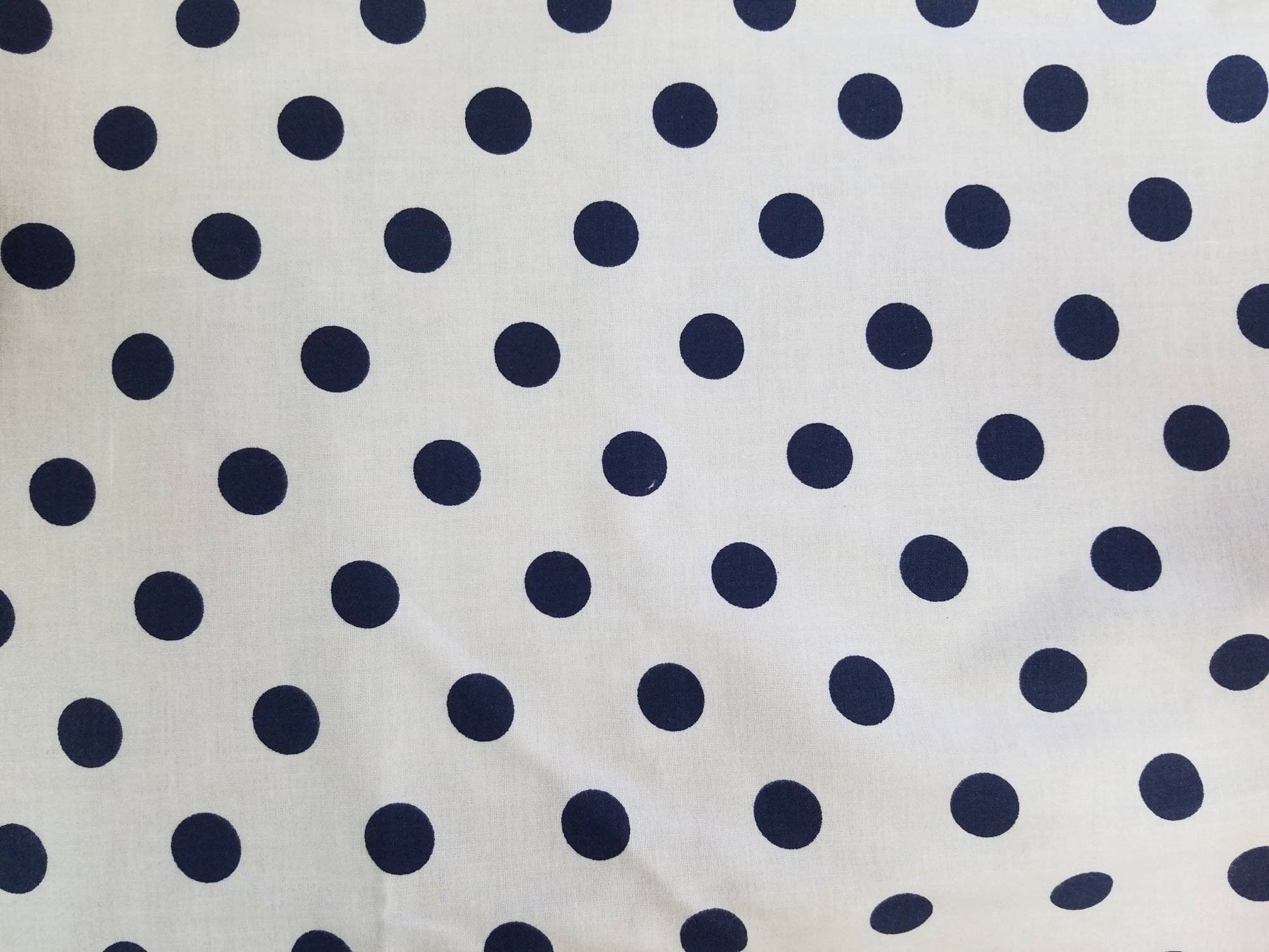 Lots-A-Dots - White with Navy Dots - 47579-03