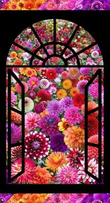 Chrysanthemum Window