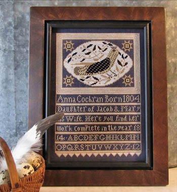 Anna's Bird