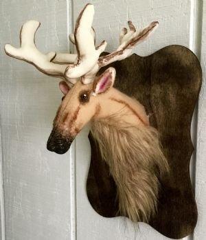 Little Deer Head