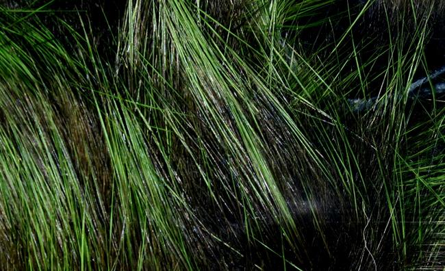 Frostip Rabbit Strips #3 Black / Olive