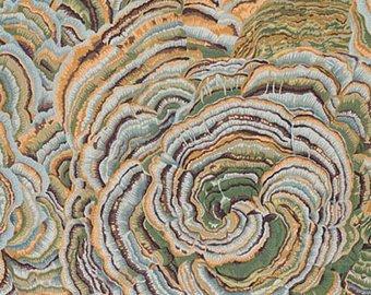 Rowan Fabrics Philip Jacobs Spring 2016 Tree Fungi Grey. 100% Cotton