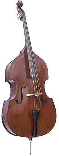 String bass rental renewal
